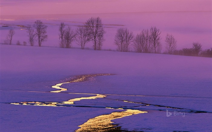 Sunset on a snowy field in Switzerland-2016 Bing Desktop Wallpaper Views:291