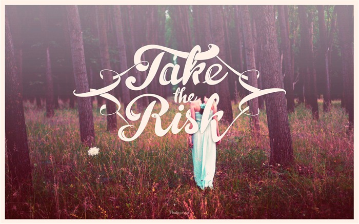 Take the risk-Text Artistic Design HD Wallpaper Views:947
