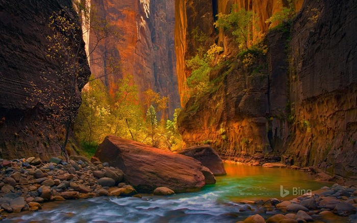 Utah The Virgin River in Zion National Park-2016 Bing Desktop Wallpaper Views:1334