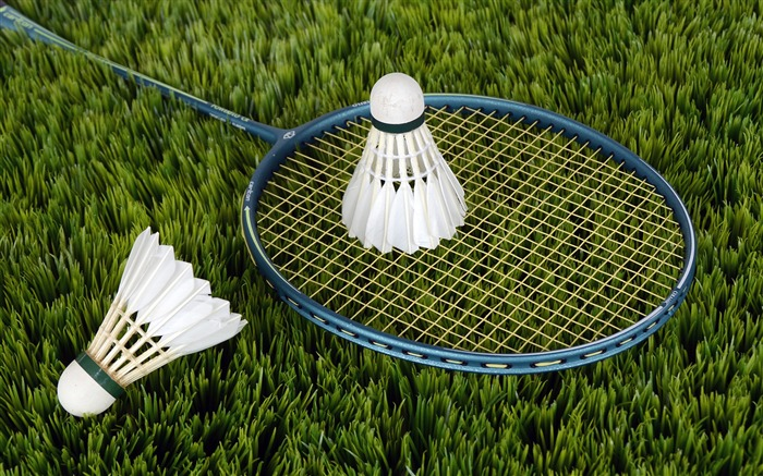 Badminton grass field-Sports Poster HD Wallpaper Views:1397