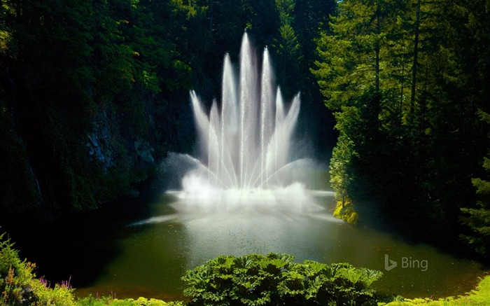 Canada Ross Fountain at Butchart Gardens-2017 Bing Desktop Wallpaper Views:914