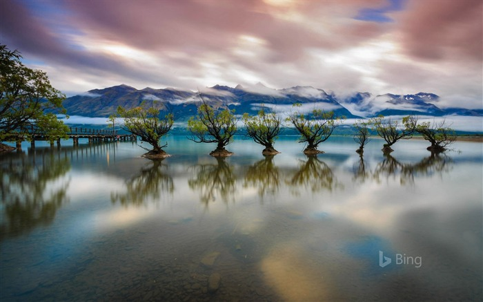 New Zealand Lake Wakatipu near Queenstown-2017 Bing Desktop Wallpaper Views:624