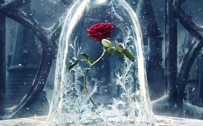 Beauty And The Beast 2017 Movies HD Wallpaper 09 Views:1342