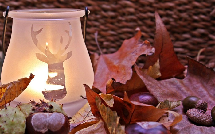 Candle lamp near red dried leaf-Life Photography HD Wallpaper Views:1197