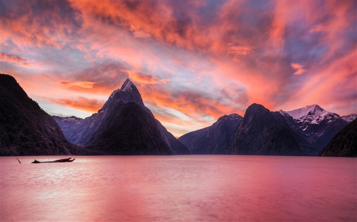 New Zealand National Park Fjord-High Quality Wallpaper Views:1028
