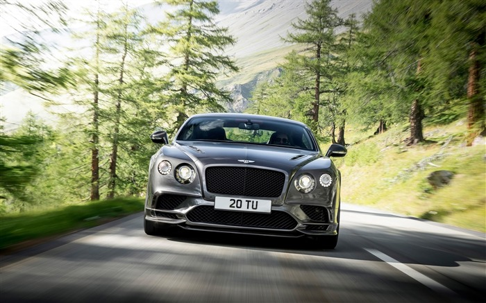 2017 Bentley Continental-Brand Car HD Wallpaper