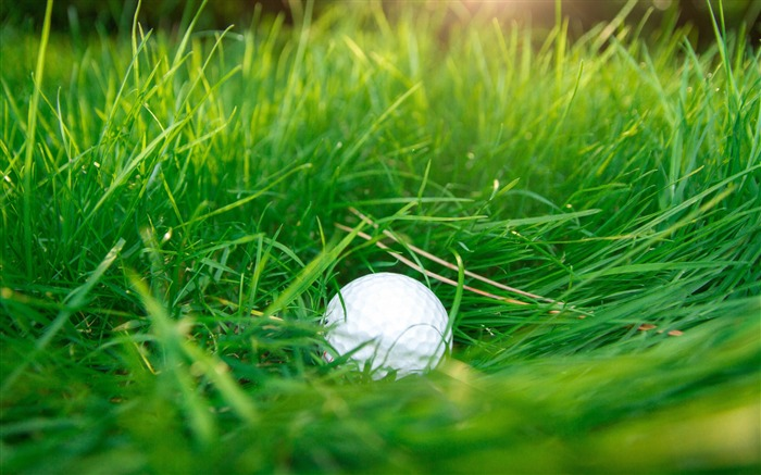Golf ball green grass-2017 High Quality Wallpaper