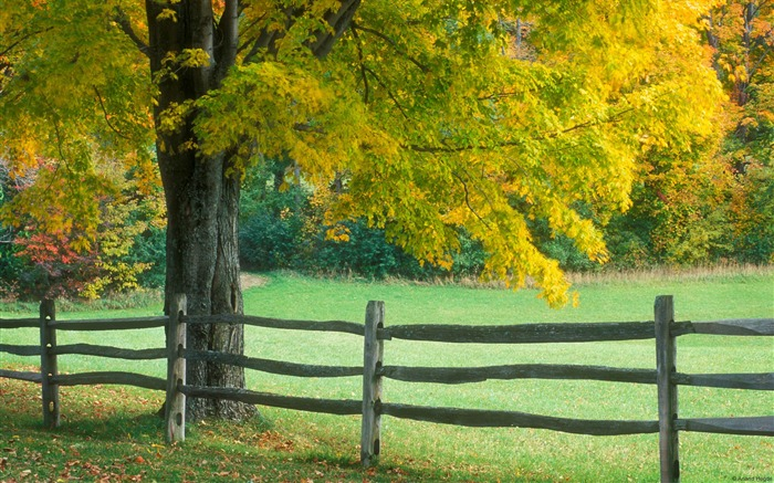 Rural vermont-Country Nature Scenery Wallpaper Views:476
