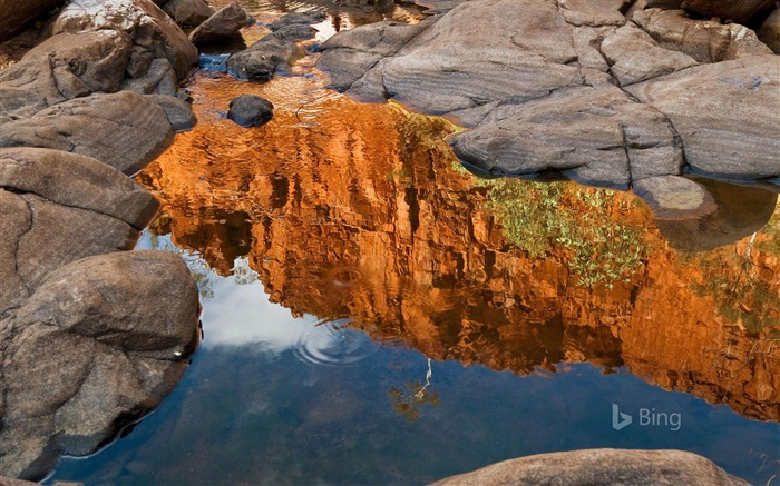 Northern Territory Reflection of Ormiston Gorge-2017 Bing Desktop Wallpaper