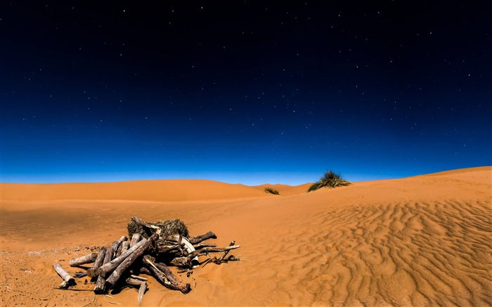 Sahara desert-2017 High Quality Wallpaper Views:962