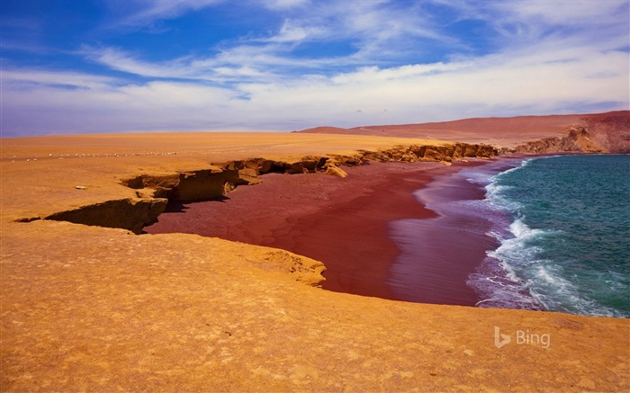 Peru Playa Roja in Paracas National Reserve-2017 Bing Desktop Wallpaper Views:4456 Date:7/22/2017 11:50:08 PM
