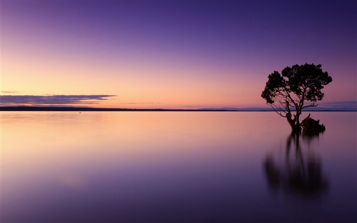 Calm lakes sunset-Nature HD Wallpapers Views:383