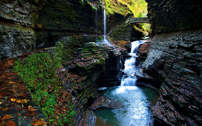 moss gorge watkins glen state park falls-Scenery HD Wallpaper Views:1219