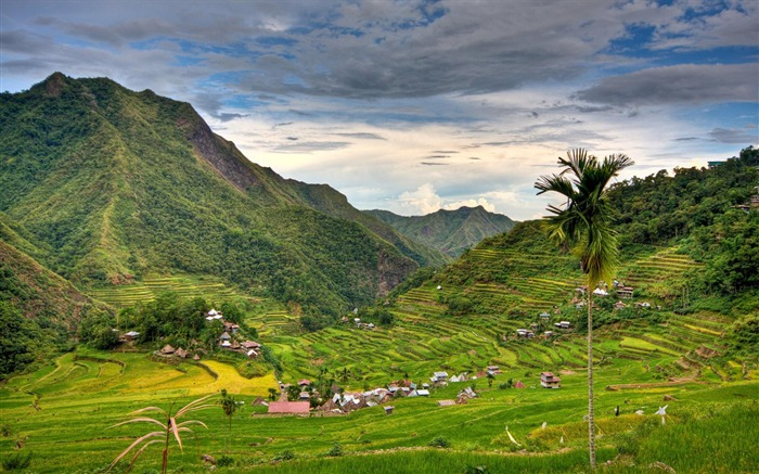 Banaue rice terraces philippines-National Geographic Wallpaper Views:427