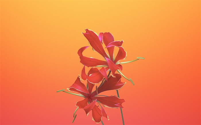 Gloriosa-Apple iOS 11 iPhone 8 iPhone X HD Wallpapers Views:454