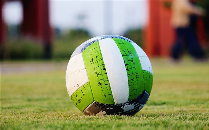 Soccer ball grass green-High Quality Wallpaper Views:430