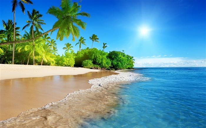 Beach tropical island-2017 High Quality Wallpaper Views:638