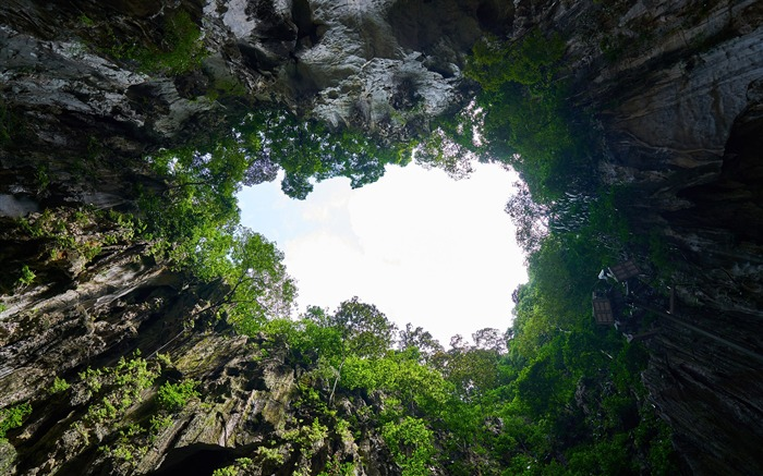 Cave forest landscape Malaysia Nature Wallpaper Views:475