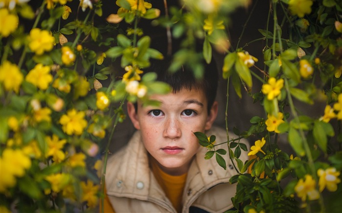 Adorable boy eyes in the flowers 2017 HD Wallpaper Views:440