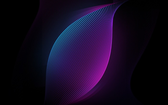 Blue and Purple Neon Curves Vector HD Wallpaper Views:553