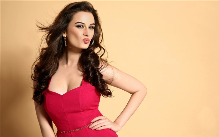 Evelyn Sharma 2017 Beauty Wallpaper Views:320