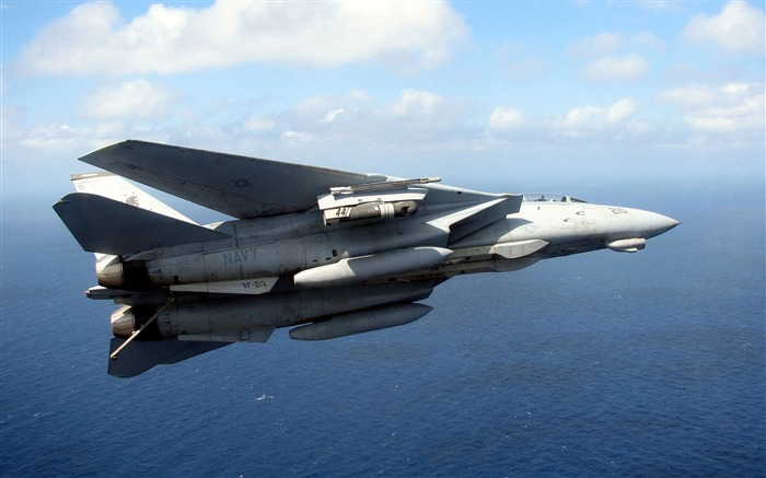 US navy f14 tomcat Aircraft HD Wallpaper Views:309