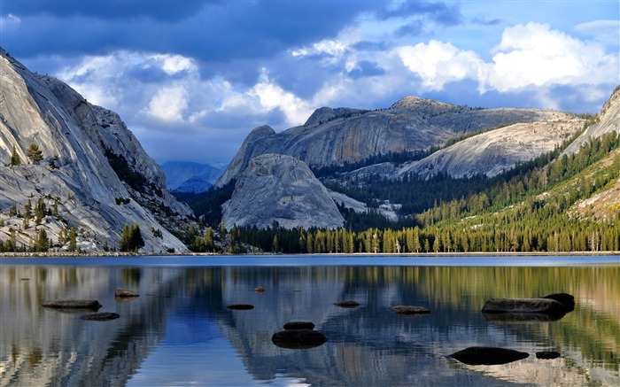 Yosemite national park forest 2017 HD Wallpaper Views:651