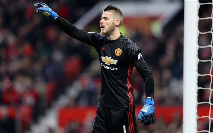 David De Gea Manchester United 2017 Footballer Photo Views:215