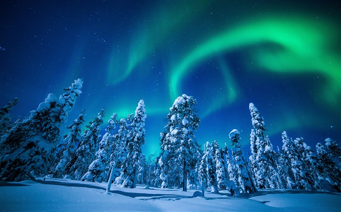 Finland winter forest aurora 4K Ultra HD  Views:11571 Date:12/23/2017 3:51:26 AM