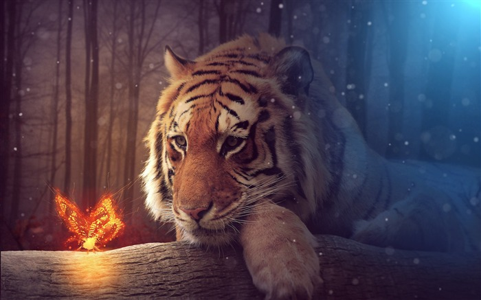 Jungle Tiger Fire Butterfly Artwork 2017 4K High Quality Views:480