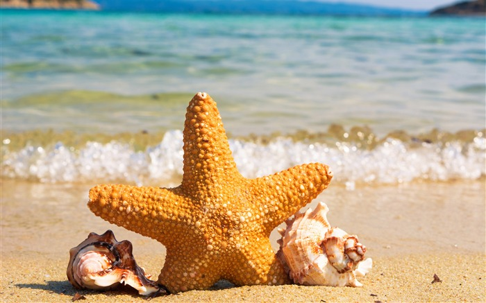 10wallpaper-com Latest 4K Ultra HD Views:1747