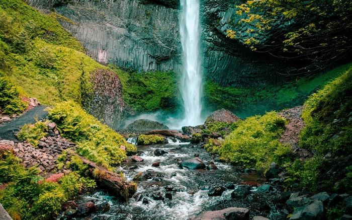 Waterfall stream moss forest landscape Views:6451 Date:12/27/2017 8:11:48 PM