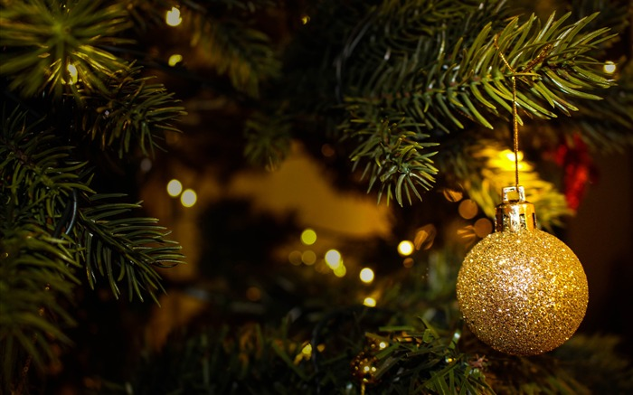 Xmas tree golden ball 2018 4K Ultra HD Views:247