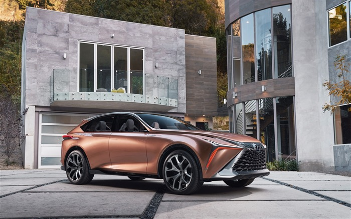 2018 Lexus LF-1 Limitless Concept Car Views:794