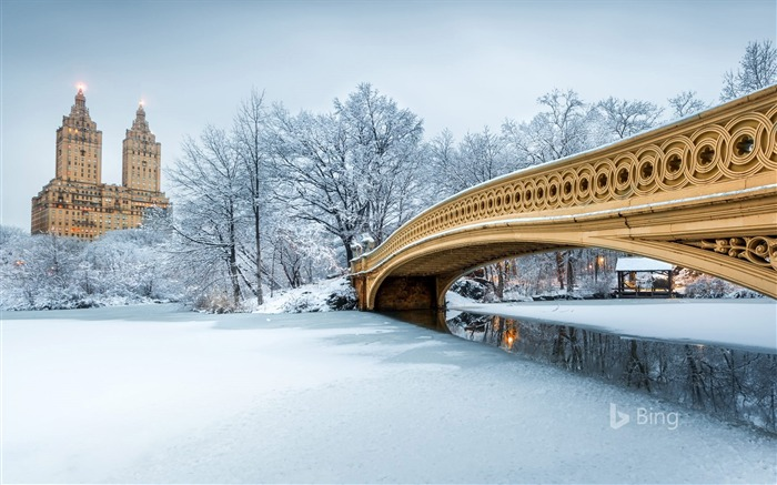 Bow Bridge in Central Park New York Bing 2018 Views:1167