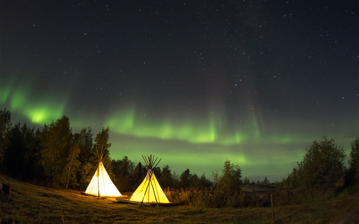 Jungle night camping Aurora landscape Views:907