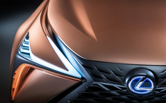 Lexus LF-1 Limitless Concept Front logo Views:416
