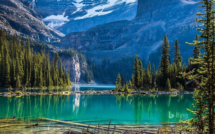Yoho National Park Lake OHara Bing 2018 Views:1311