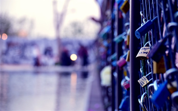 City Fence Romance Love Lock 4K HD Views:368