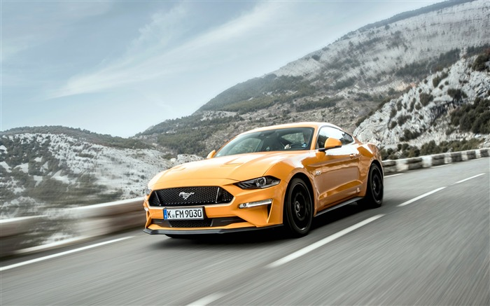 2018 Ford Mustang GT Fastback QK Views:626