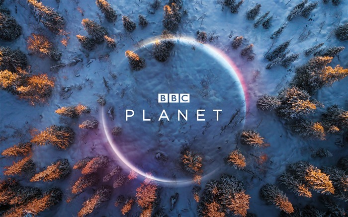BBC Planet Forest Winter 2019 High Quality Views:1508 Date:10/2/2019 5:45:52 AM