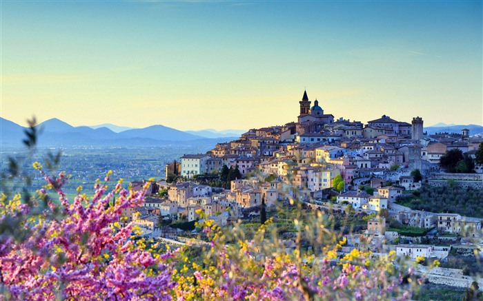 Almond Perugia district Umbria Italy 2021 Bing Theme Desktop Views:1969 Date:2/27/2021 1:54:02 AM