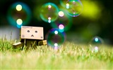 Title:Danbo Danboard Widescreen Wallpapers Views:21673