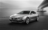 Title:Concept Car BMW 6-Series Coupe - 2010 HD wallpaper Views:7072