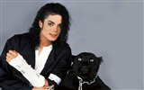 Title:Michael Joseph Jackson wallpaper 02 Views:11534