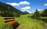 Title:Photo Bench in country field Beauty of Nature Views:23308