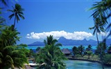 Title:coconut holiday homes surrounded by wallpaper Views:7190