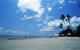 Title:dazzling white sand beach wallpapers Views:9769