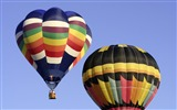 Title:Colorful hot air balloons in sky 02 Views:4667