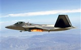 Title:F-22 Raptor fighter wallpaper Views:11785